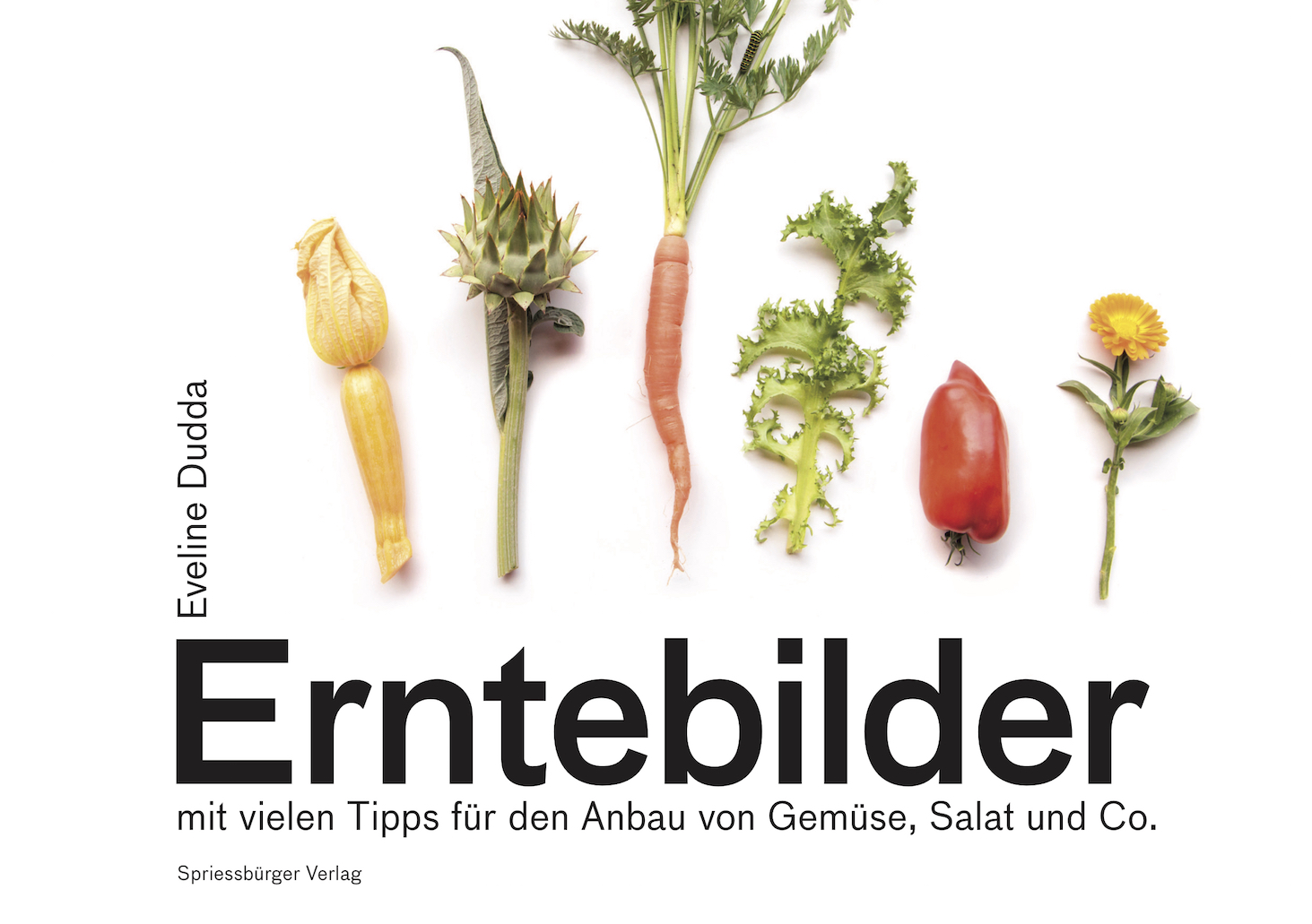 0-Erntebilder-Cover